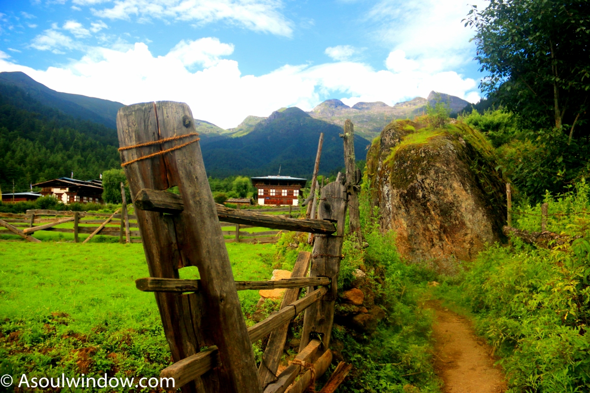 HAA VALLEY - EXCLUSIVE PICTURES AND STORY ON THE OFFBEAT PARADISE OF BHUTAN NO ONE TALKS ABOUT!