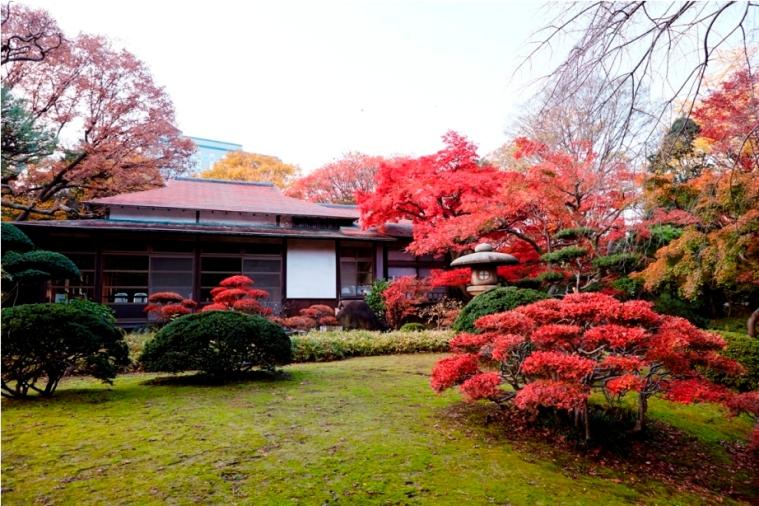 koishikawa-1