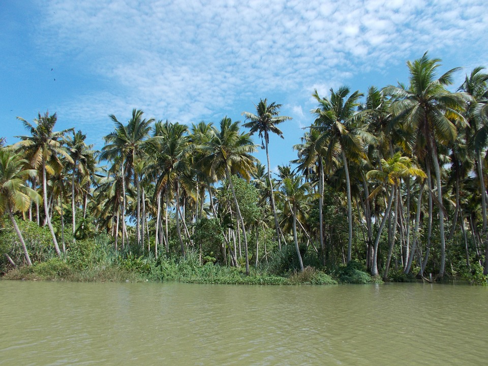 backwaters-726181_960_720