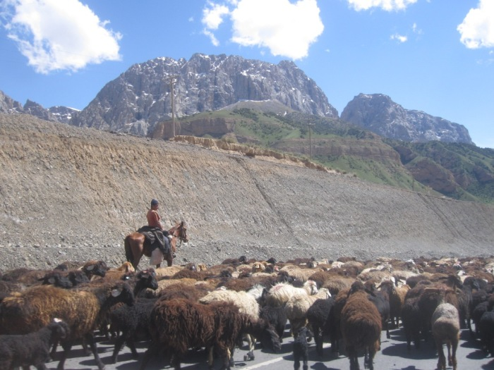 Kyrgyz Traffic Jam