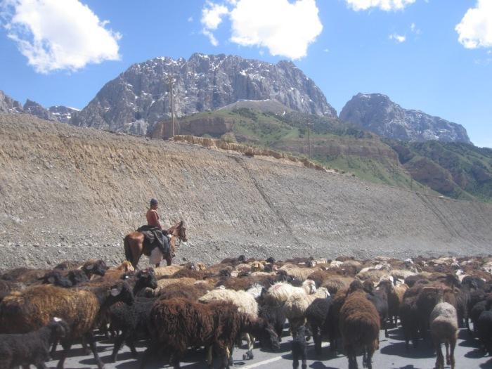 Kyrgyz Traffic Jam