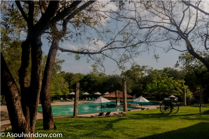 Amaya Lake, Dambulla. Hotel Sri Lanka (3)