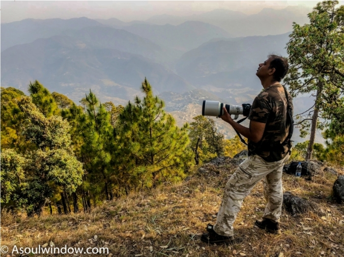 Anant Rasa, Shitlakhet, Uttarakhand Birdwatching (2)