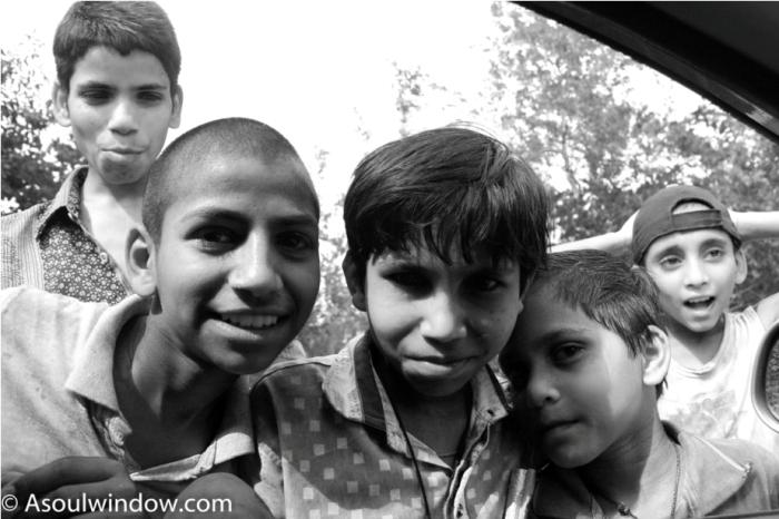 Kids. Dussehri Mango Tree Malihabad, kakori, Lucknow. India Kaleem Ullah Khan