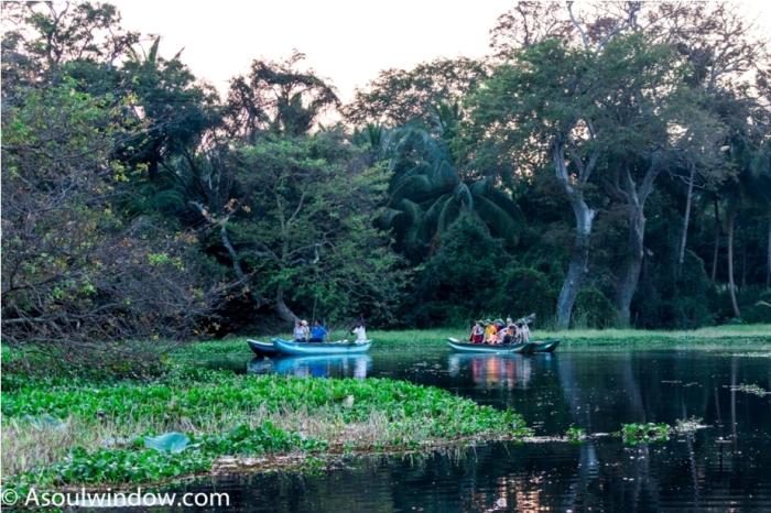Hiriwadunna Village safari Dambulla Sigiriya Sri Lanka (11)
