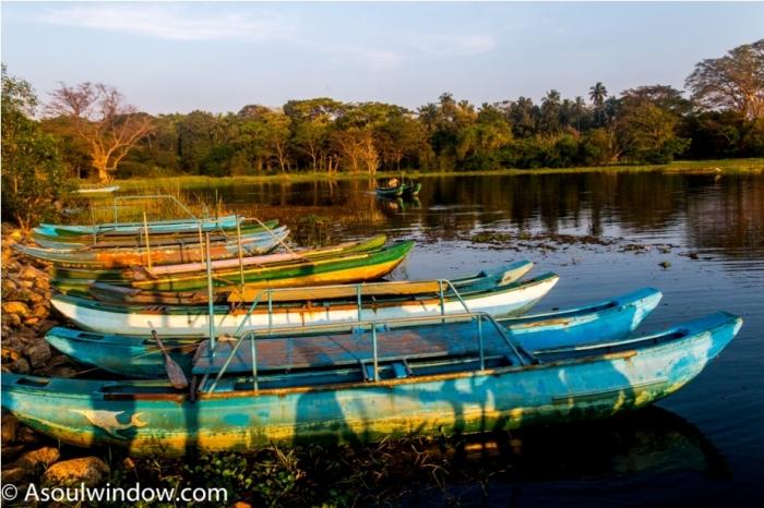 Hiriwadunna Village safari Dambulla Sigiriya Sri Lanka (6)