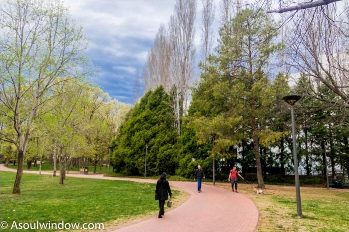 Glebe Park Mahatma Gandhi Statue Canberra Australia (2)