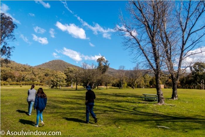 Nature Canberra Australia