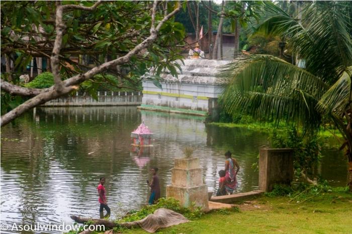 Raghurajpur Heritage Village Pattachitra Puri Odisha (9)