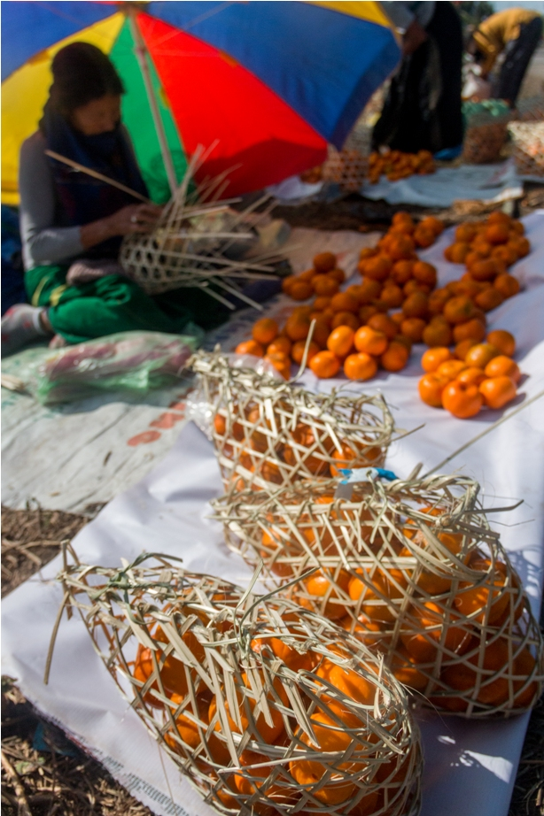 Basket Orange music festival Dambuk Arunachal Pradesh India