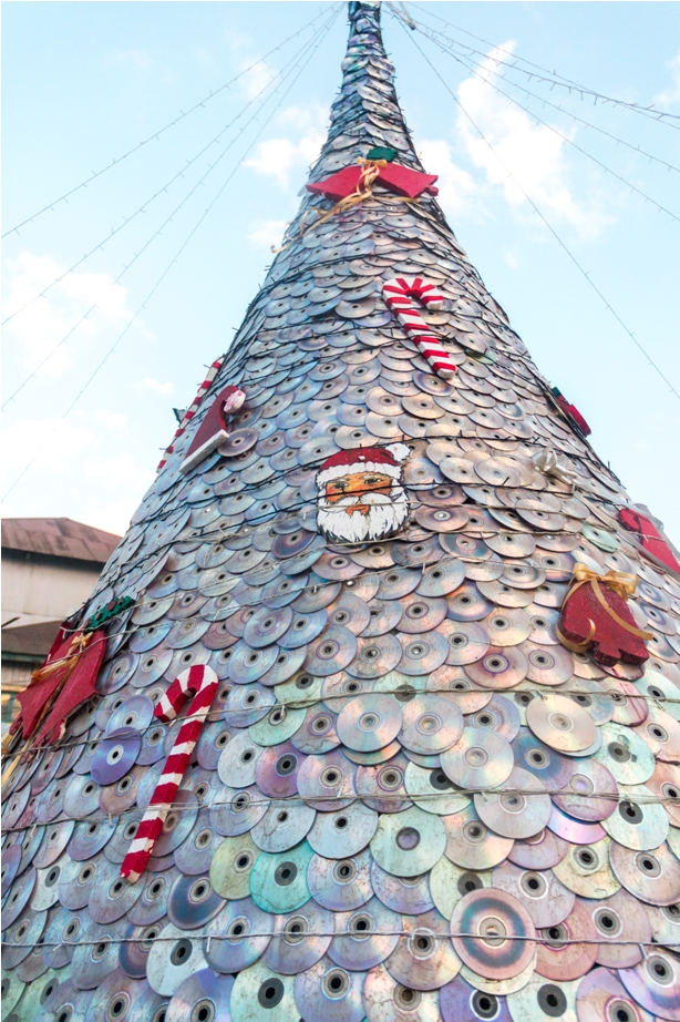 Christmas tree Ukhrul Manipur North East India