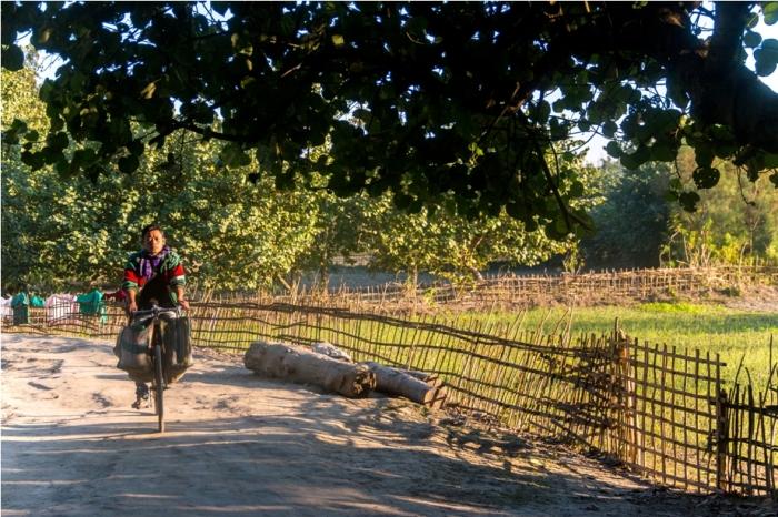 Cycle Mishing Village Bamboo Homestay Majuli River Island Assam India