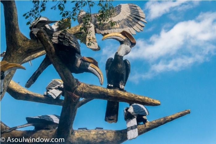 Hornbill festival Nagaland India
