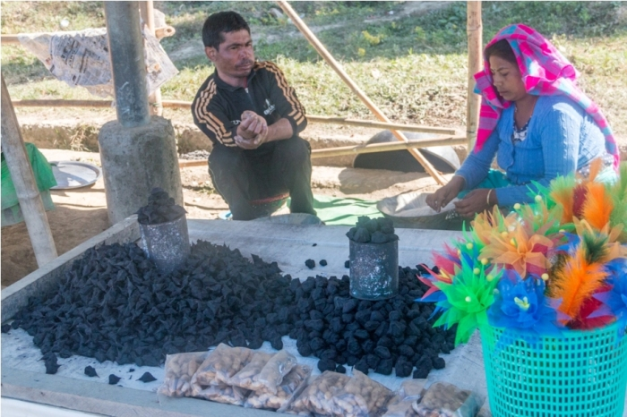 Singhada Water Chestnut Loktak Lake Manipur Incredible India Phumdi (2)