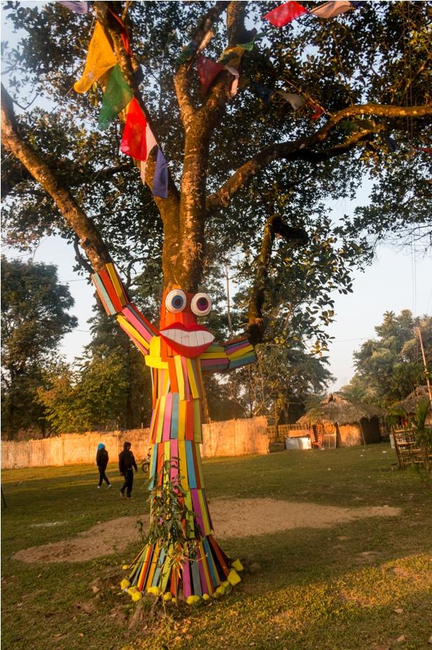 Tree Orange music festival Dambuk Arunachal Pradesh India