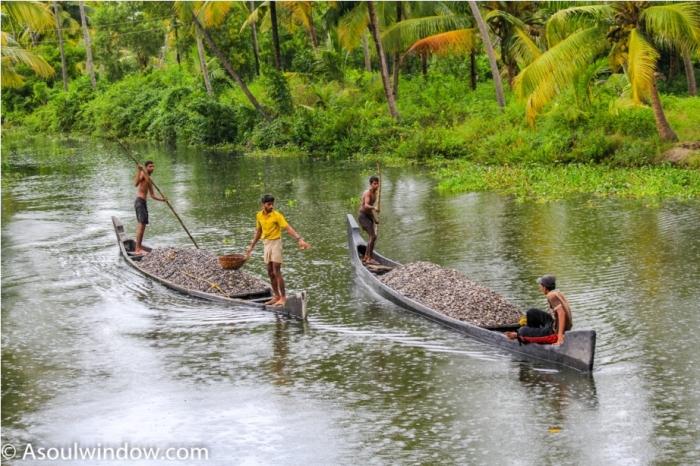 Alleppey Alappuzha. Vembanad lake Backwaters Kerala India (3)