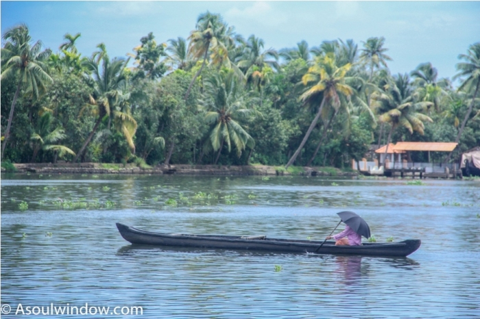 Alleppey Alappuzha. Vembanad lake Backwaters Kerala India (6)