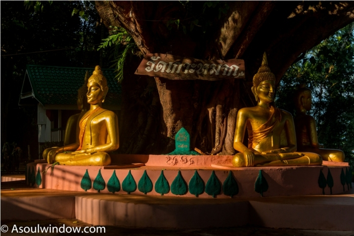 Chanthaburi Koh Mak Island Trat Offbeat Thailand (29)