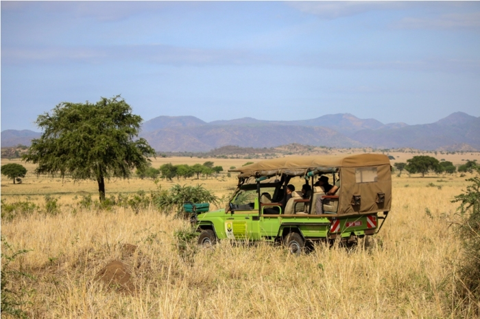 Kidepo National Park Jeep Uganda Africa (3)