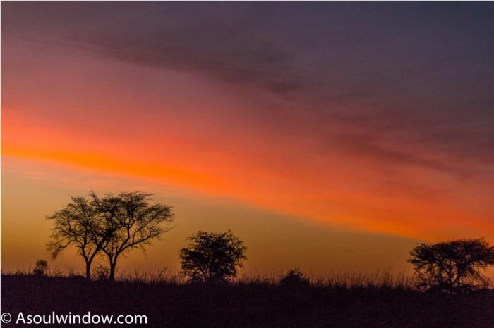 Kidepo National Park Uganda Africa (49)