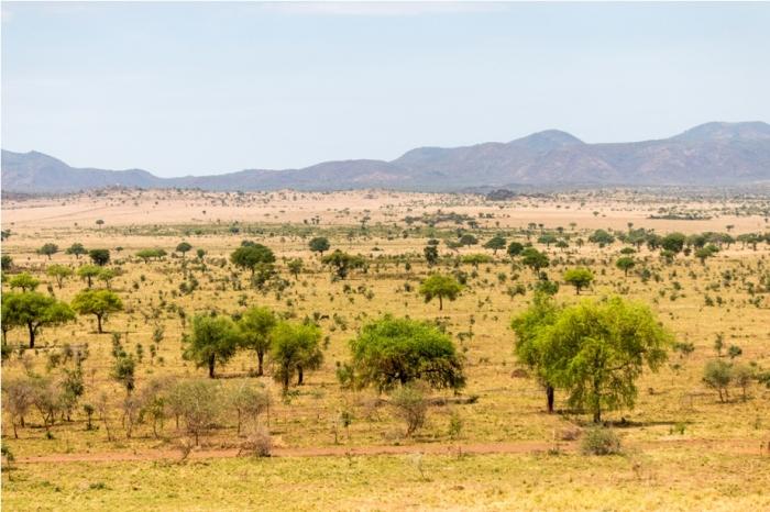 Landscape Kidepo National Park Uganda Africa (31)