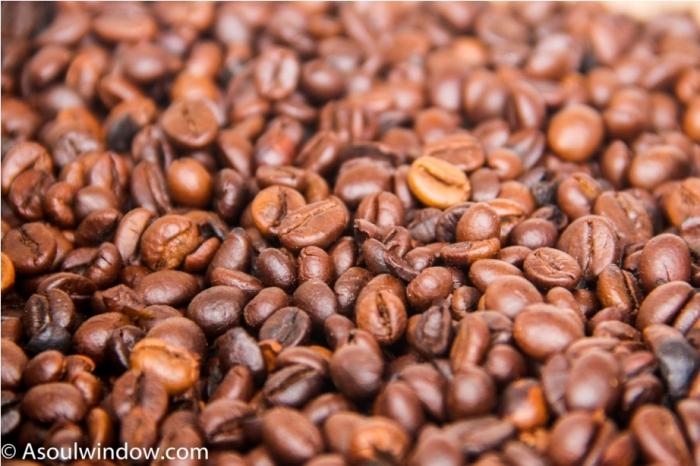 Coffee Coorg Kodagu Madikeri Karnataka India (19)