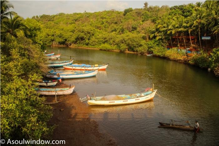 Backwater Palolem Patnem Beach South Goa India (7)
